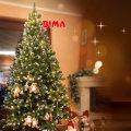 Božićno drvce Bima