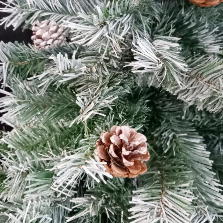 Gusta božićna drvca